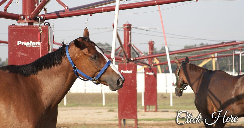Priefert Horse Lead Walkers